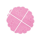 Rosa n. 7